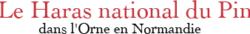 logo_pin